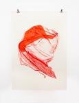 Parte de la Serie Cortina Vermelha, de Flora Rebollo